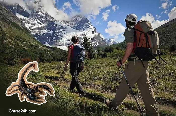 Mẹo phòng tránh côn trùng khi du lịch