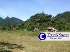 Tranh chấp đất ở Gia Lai: Có dấu hiệu lừa đảo để hợp thức hóa