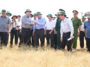 Phó Thủ tướng Nguyễn Xuân Phúc thị sát cánh đồng lúa khô hạn ở xã Chư Don. Ảnh: Lê Kiến