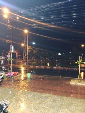 Chư Sê đã có mưa, nhưng chưa là 'mưa vàng'