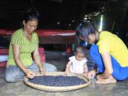 Điều tra vụ lừa đảo chiếm quyền sử dụng đất của dân ở Gia Lai