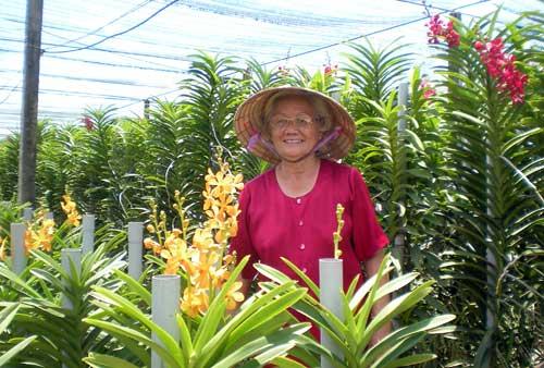 Bà Bé giữa vườn hoa lanMokara của mình